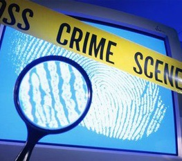 Criminal Investigations and Network Analysis